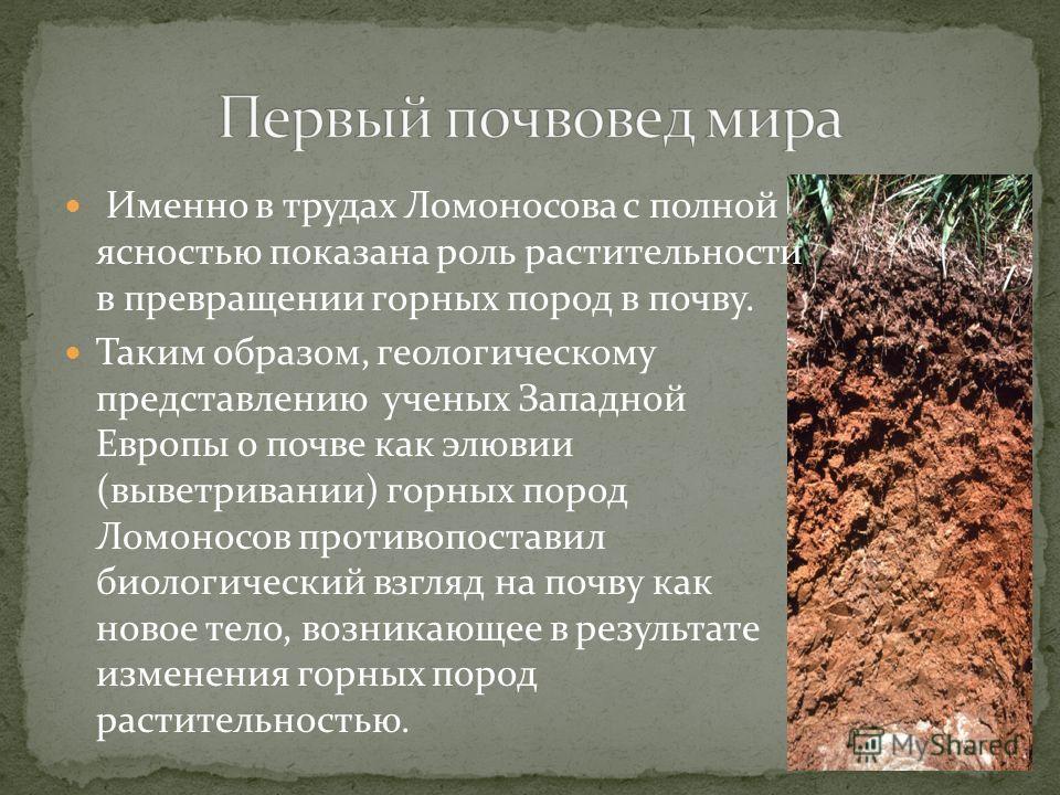 Именно в трудах Ломоносова с полной ясностью показана роль растительности в превращении горных пород в почву. Таким образом, геологическому представлению ученых Западной Европы о почве как элювии (выветривании) горных пород Ломоносов противопоставил
