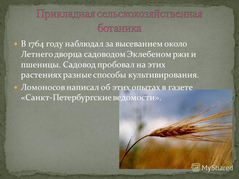 В 1764 году наблюдал за высеванием около Летнего дворца садоводом Эклебеном ржи и пшеницы. Садовод пробовал на этих растениях разные способы культивирования. Ломоносов написал об этих опытах в газете «Санкт-Петербургские ведомости».