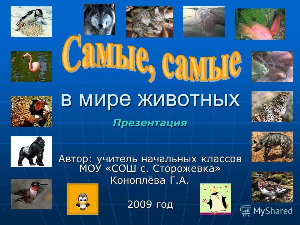 в мире животных Презентация Автор: учитель начальных классов МОУ «СОШ с. Сторожевка» Коноплёва Г.А. 2009 год