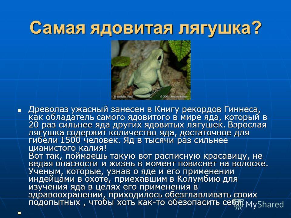 Самая ядовитая лягушка? Древолаз ужасный занесен в Книгу рекордов Гиннеса, как обладатель самого ядовитого в мире яда, который в 20 раз сильнее яда других ядовитых лягушек. Взрослая лягушка содержит количество яда, достаточное для гибели 1500 человек