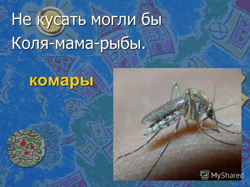 комары Не кусать могли бы Коля-мама-рыбы.