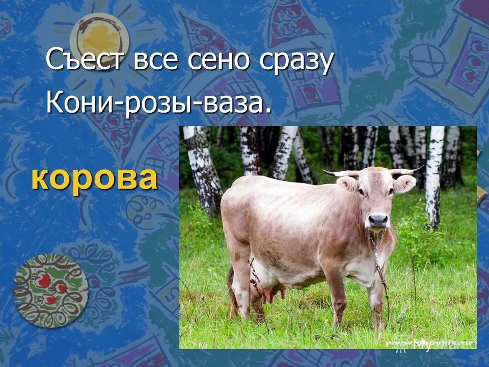 корова Съест все сено сразу Кони-розы-ваза.