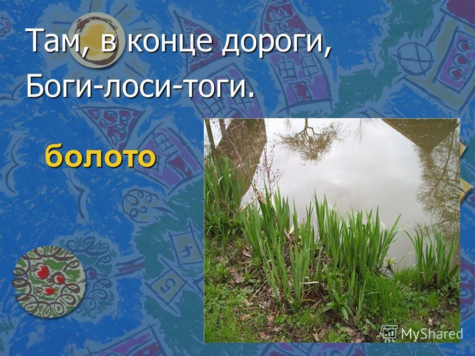 болото Там, в конце дороги, Боги-лоси-тоги.