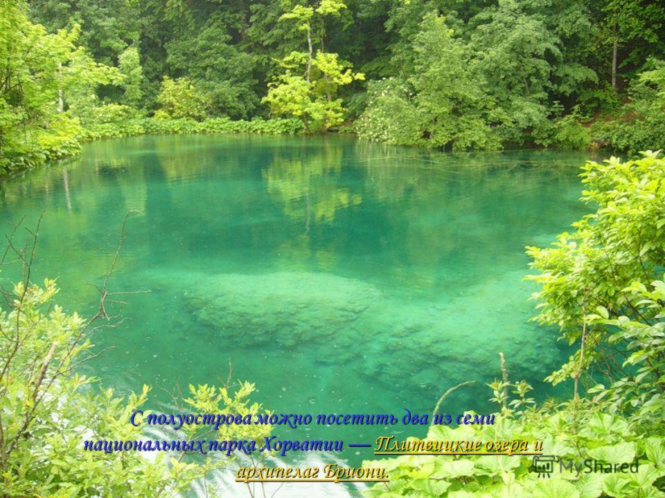 С полуострова можно посетить два из семи национальных парка Хорватии Плитвицкие озера и архипелаг Бриони. Плитвицкие озера и архипелаг Бриони.Плитвицкие озера и архипелаг Бриони.