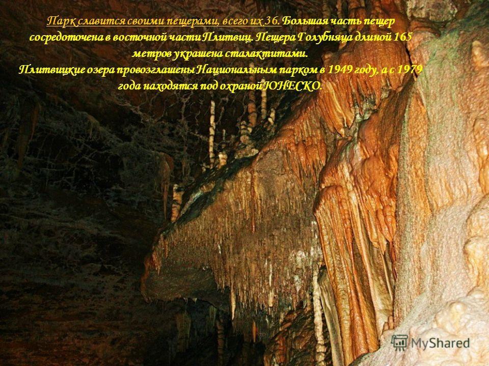 Парк славится своими пещерами, всего их 36. Парк славится своими пещерами, всего их 36. Большая часть пещер сосредоточена в восточной части Плитвиц. Пещера Голубняца длиной 165 метров украшена сталактитами. Плитвицкие озера провозглашены Национальным