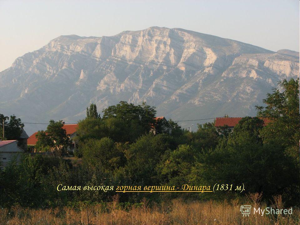 Самая высокая горная вершина - Динара (1831 м). горная вершина - Динара горная вершина - Динара