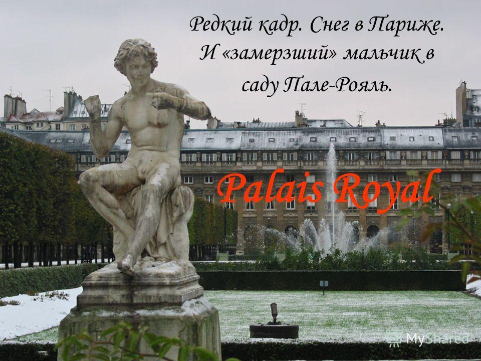 Редкий кадр. Снег в Париже. И «замерзший» мальчик в саду Пале-Рояль. Palais Royal