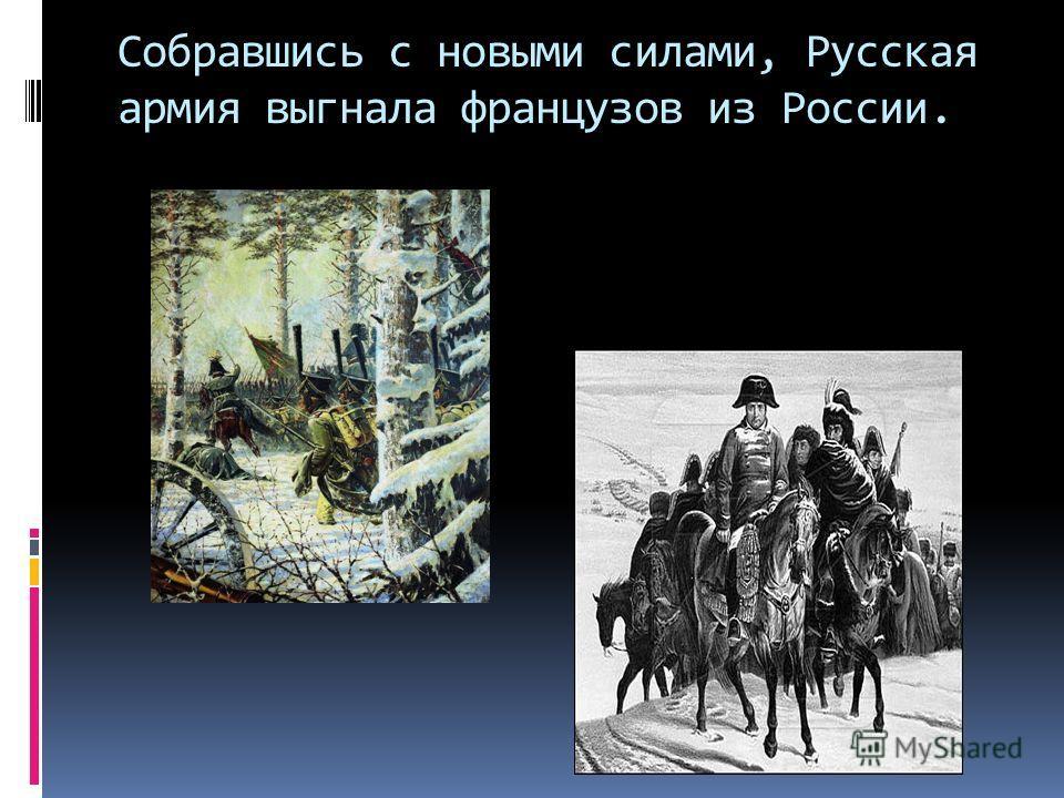 Собравшись с новыми силами, Русская армия выгнала французов из России.