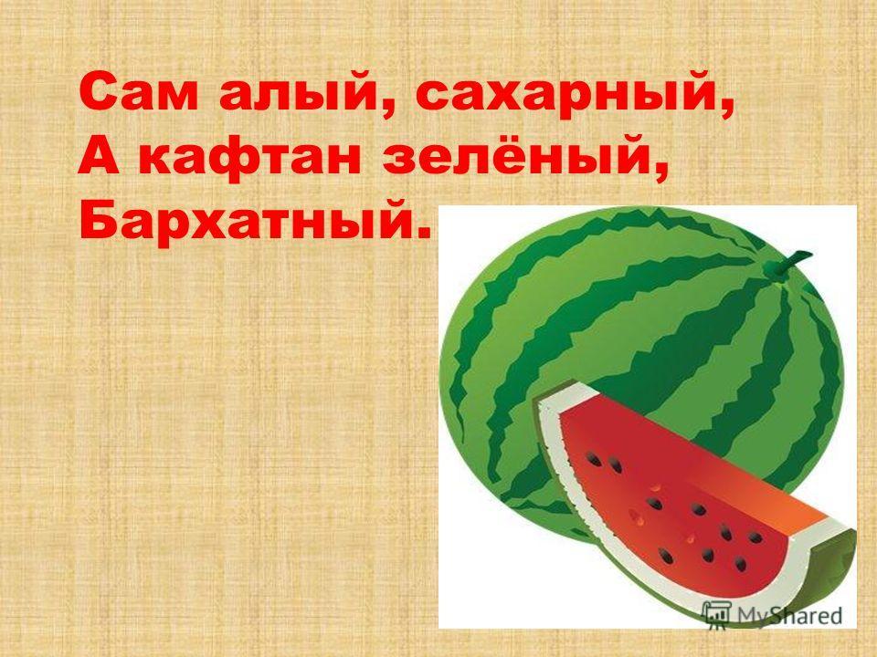 Сам алый, сахарный, А кафтан зелёный, Бархатный.