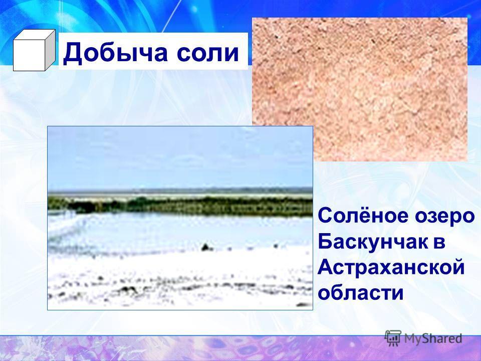 Солёное озеро Баскунчак в Астраханской области Добыча соли