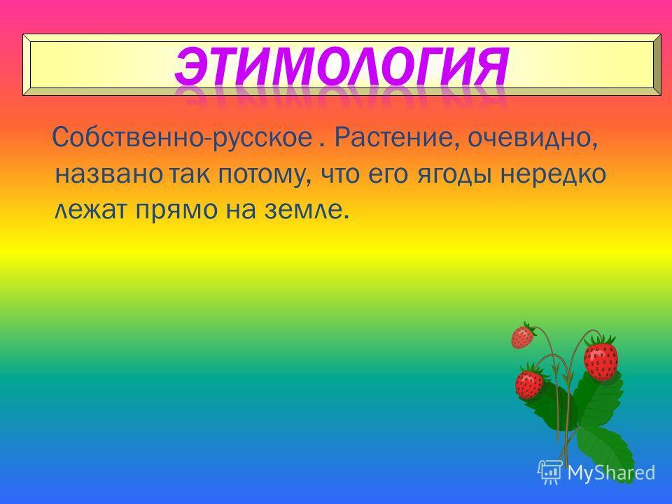 Собственно-русское. Растение, очевидно, названо так потому, что его ягоды нередко лежат прямо на земле.