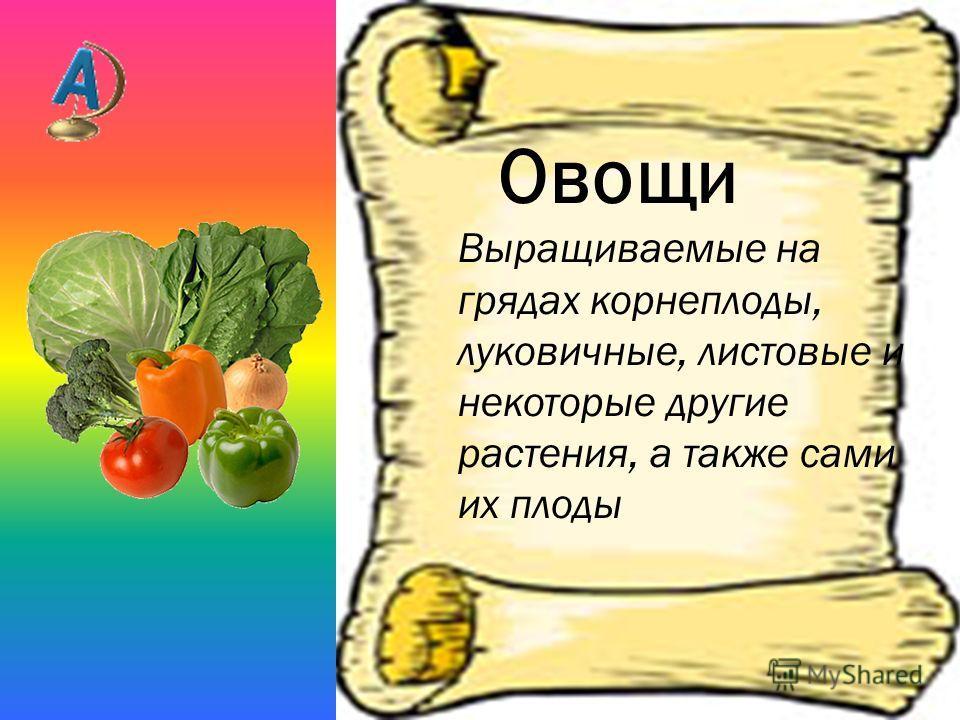 Овощи Выращиваемые на грядах корнеплоды, луковичные, листовые и некоторые другие растения, а также сами их плоды