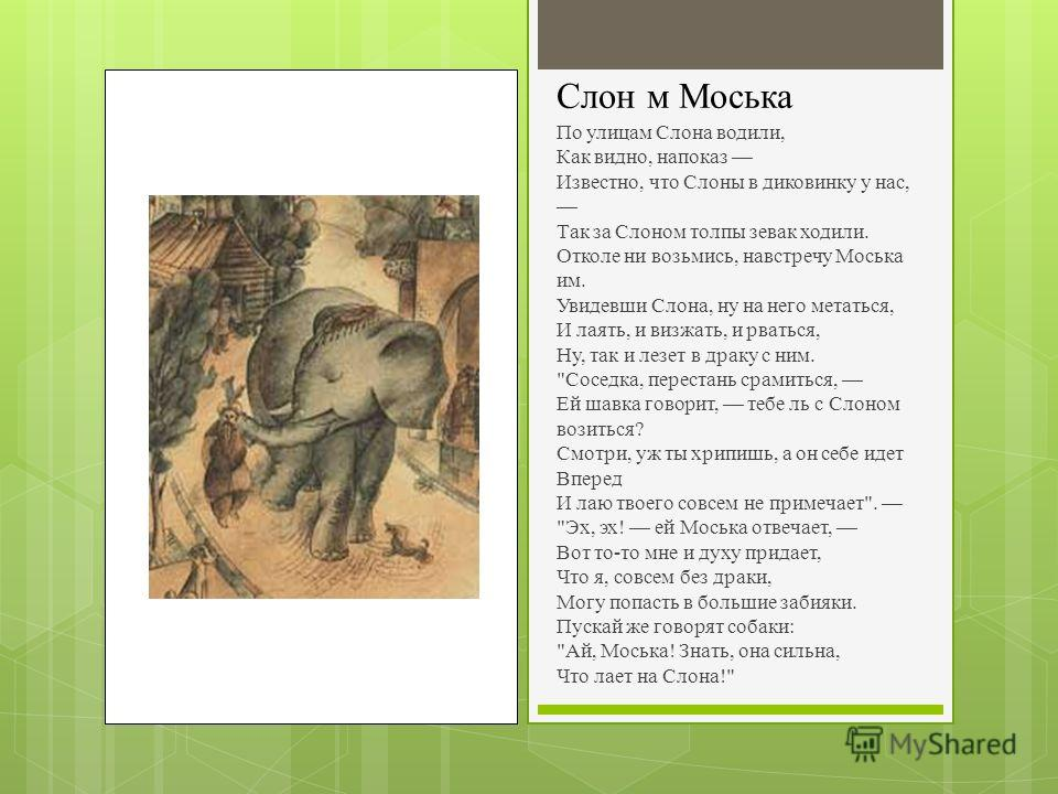 Слон м Моська По улицам Слона водили, Как видно, напоказ Известно, что Слоны в диковинку у нас, Так за Слоном толпы зевак ходили. Отколе ни возьмись, навстречу Моська им. Увидевши Слона, ну на него метаться, И лаять, и визжать, и рваться, Ну, так и л