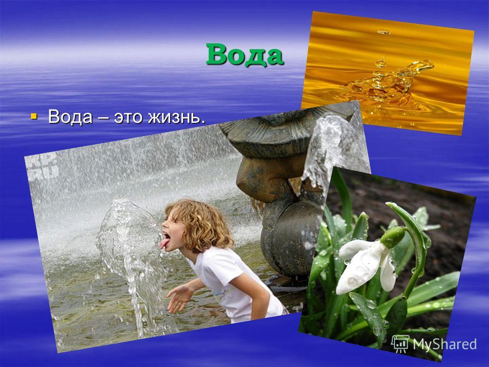 Вода Вода – это жизнь. Вода – это жизнь.