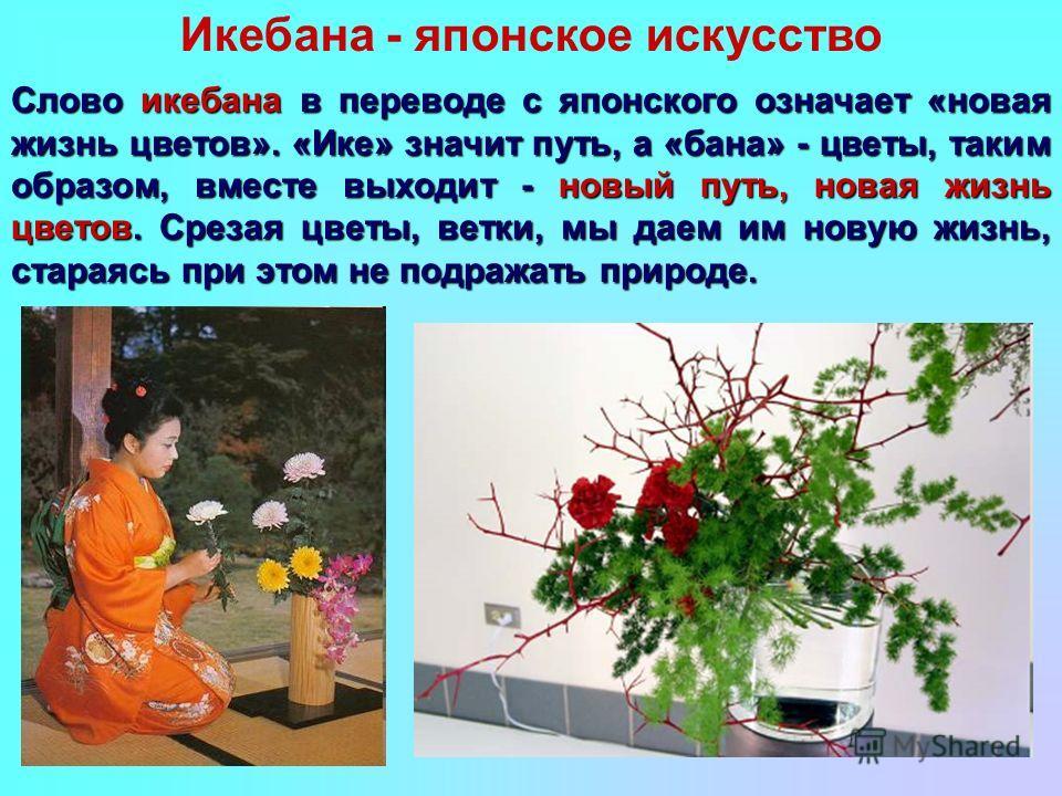 Слово икебана в переводе с японского означает «новая жизнь цветов». «Ике» значит путь, а «бана» - цветы, таким образом, вместе выходит - новый путь, новая жизнь цветов. Срезая цветы, ветки, мы даем им новую жизнь, стараясь при этом не подражать приро