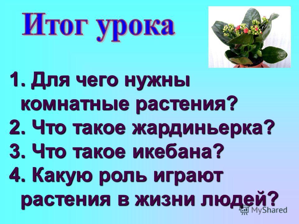 1. Для чего нужны комнатные растения? 2. Что такое жардиньерка? 3. Что такое икебана? 4. Какую роль играют растения в жизни людей?