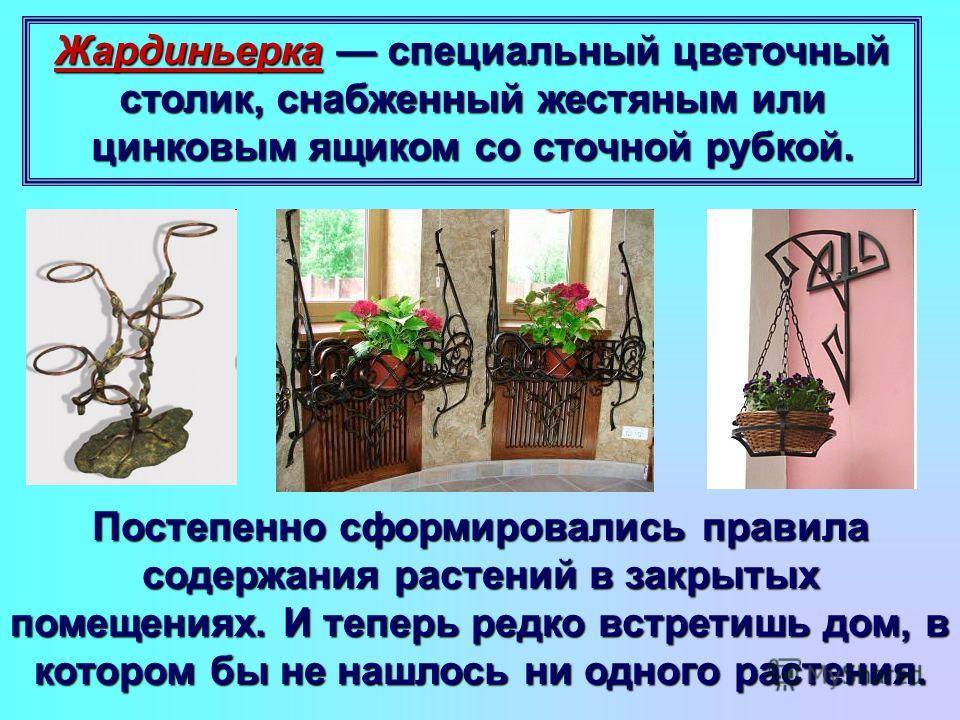 Жардиньерка специальный цветочный столик, снабженный жестяным или цинковым ящиком со сточной рубкой. Постепенно сформировались правила содержания растений в закрытых помещениях. И теперь редко встретишь дом, в котором бы не нашлось ни одного растения
