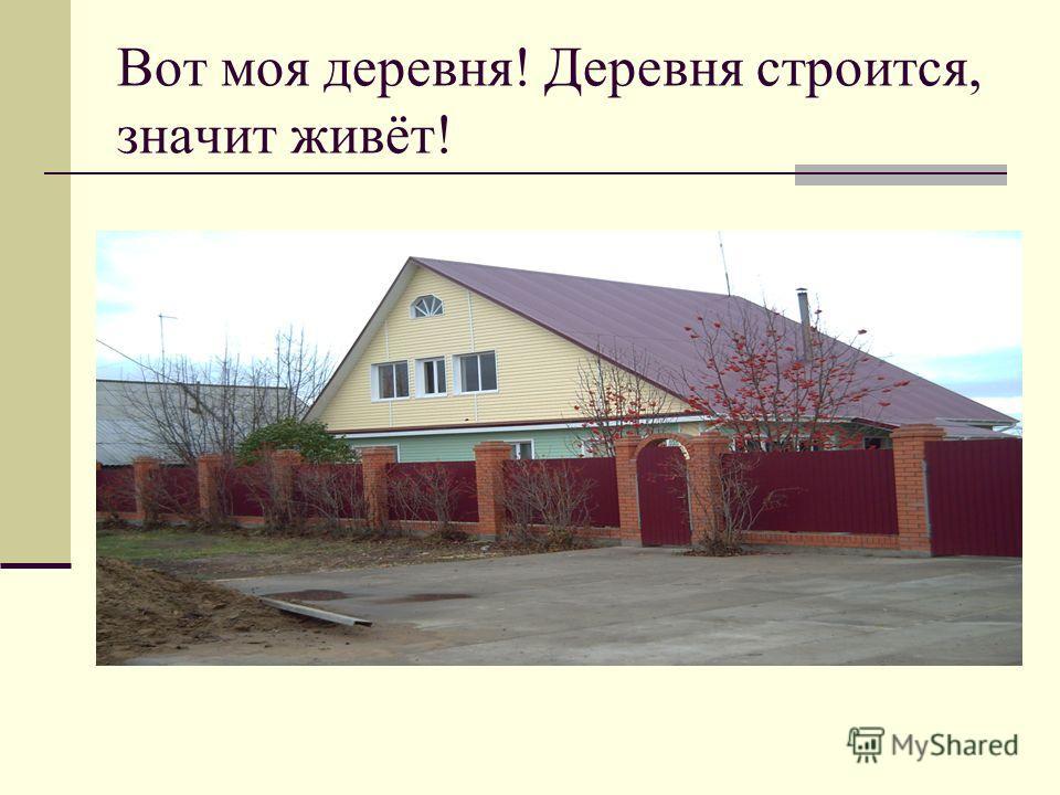 Вот моя деревня! Деревня строится, значит живёт!