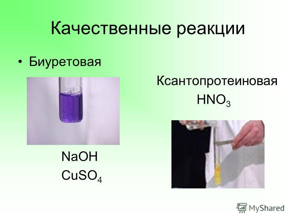 Качественные реакции Биуретовая Ксантопротеиновая HNO 3 NaOH CuSO 4