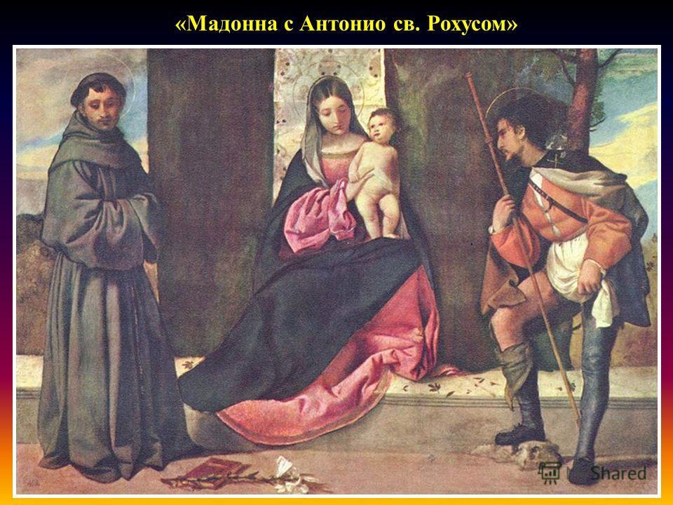 « Мадонна с Антонио св. Рохусом »