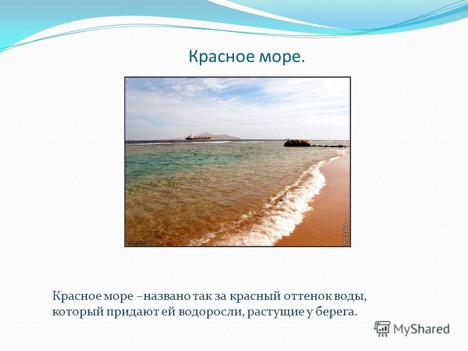 Красное море. Красное море –названо так за красный оттенок воды, который придают ей водоросли, растущие у берега.