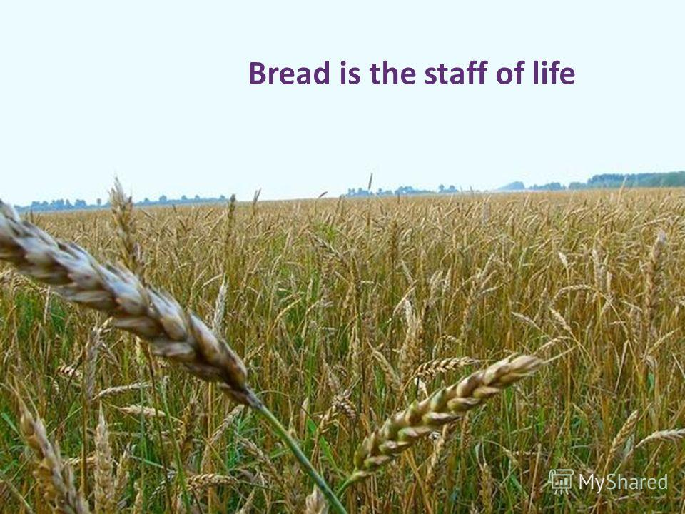 Bread is the staff of life