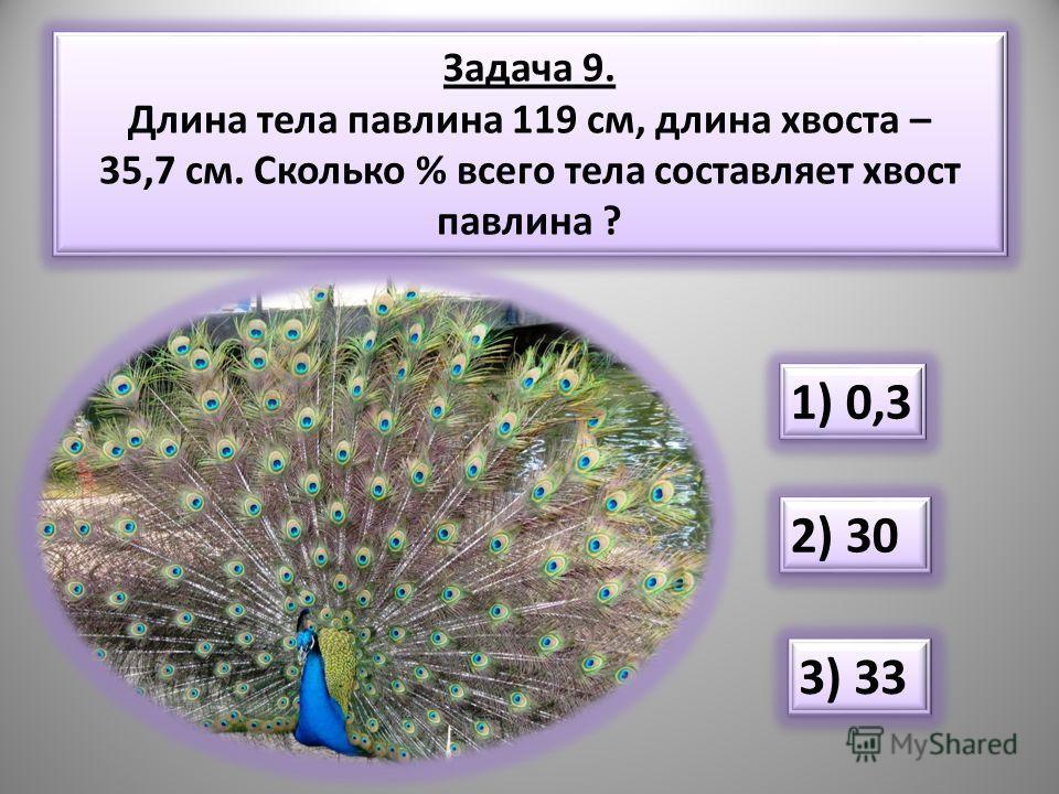 Задача 9. Длина тела павлина 119 см, длина хвоста – 35,7 см. Сколько % всего тела составляет хвост павлина ? 1) 0,3 2) 30 3) 33