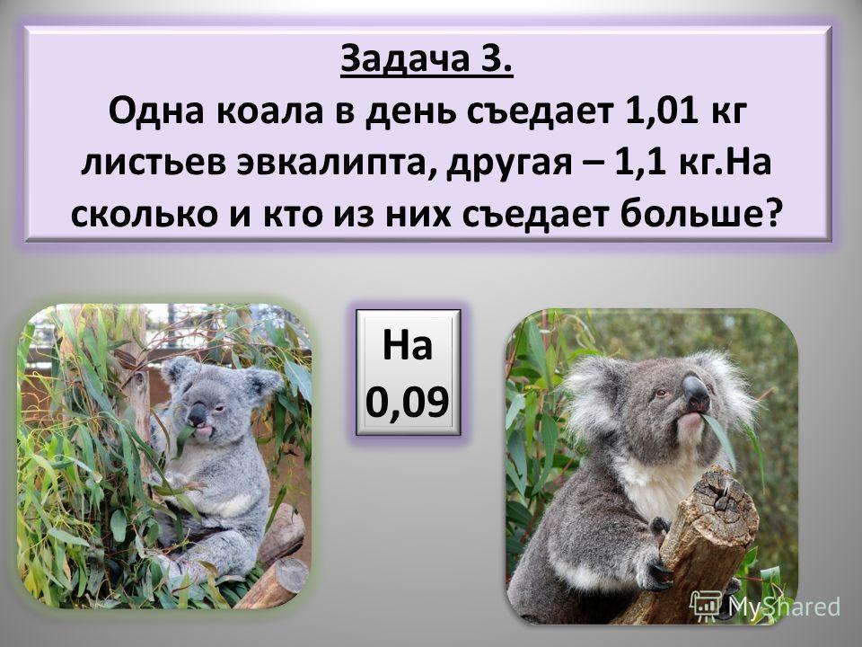 Задача 3. Одна коала в день съедает 1,01 кг листьев эвкалипта, другая – 1,1 кг.На сколько и кто из них съедает больше? На 0,09 На 0,09
