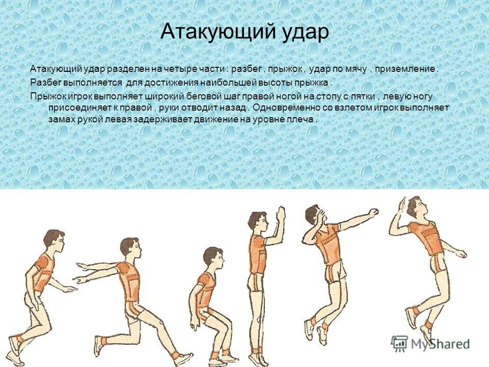 Атакующий удар Атакующий удар разделен на четыре части : разбег, прыжок, удар по мячу, приземление. Разбег выполняется для достижения наибольшей высоты прыжка. Прыжок игрок выполняет широкий беговой шаг правой ногой на стопу с пятки, левую ногу присо