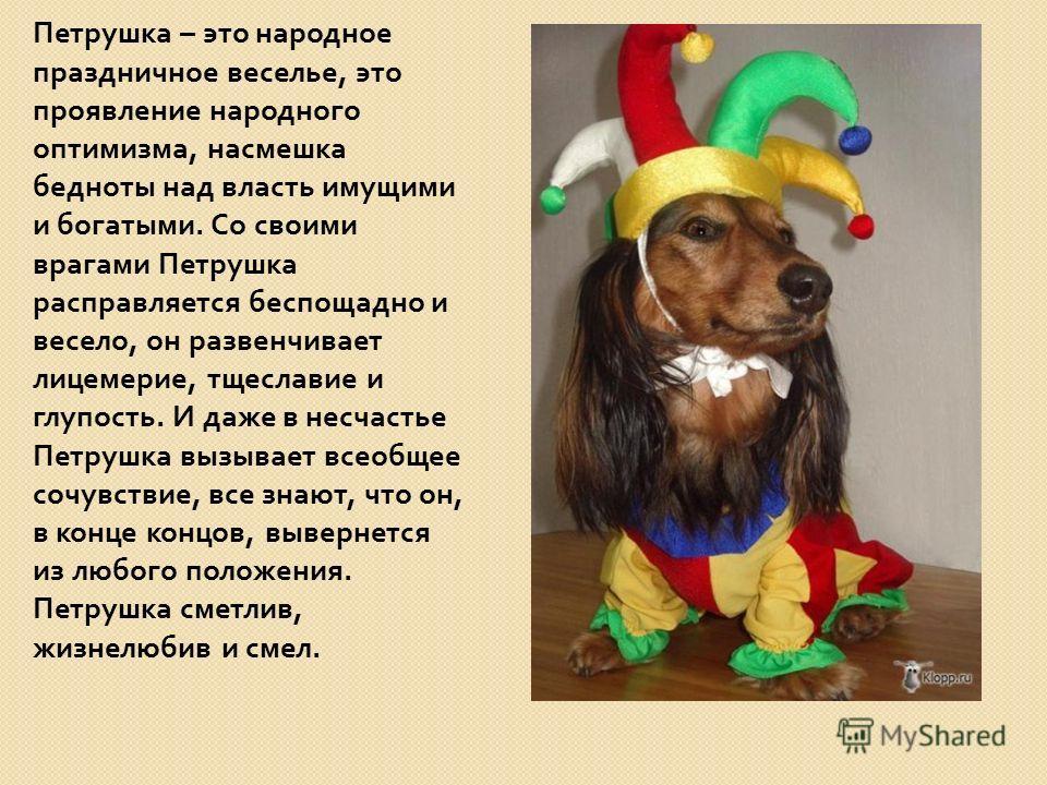 Петрушка – это народное праздничное веселье, это проявление народного оптимизма, насмешка бедноты над власть имущими и богатыми. Со своими врагами Петрушка расправляется беспощадно и весело, он развенчивает лицемерие, тщеславие и глупость. И даже в н