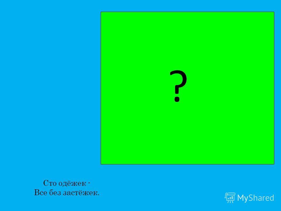 Скачет по болоту Зелёная квакушка. Зелёненькие ножки, Зовут её... ?