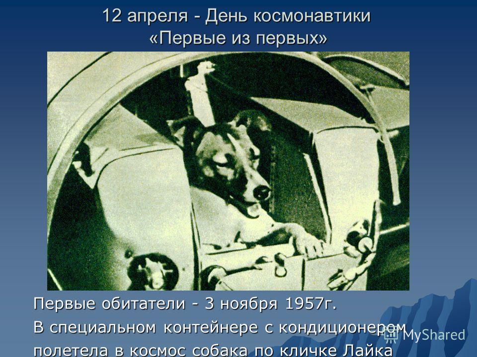 12 апреля - День космонавтики «Первые из первых» Первые обитатели - 3 ноября 1957г. В специальном контейнере с кондиционером полетела в космос собака по кличке Лайка