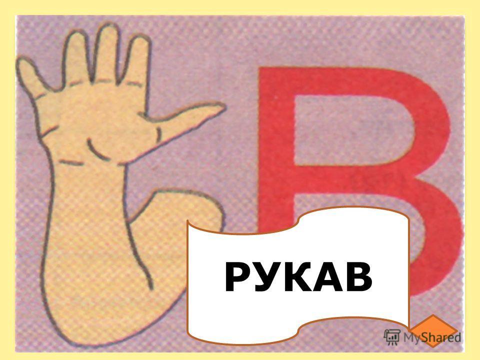 РУКАВ