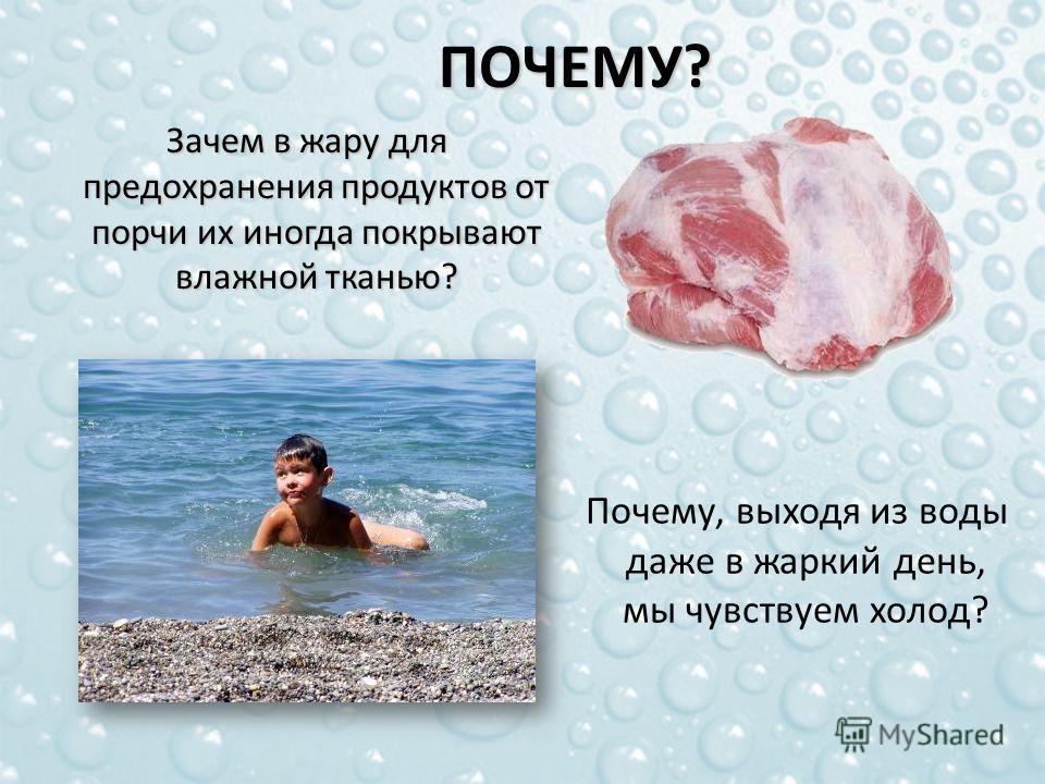 ПОЧЕМУ? Зачем в жару для предохранения продуктов от порчи их иногда покрывают влажной тканью? Зачем в жару для предохранения продуктов от порчи их иногда покрывают влажной тканью? Почему, выходя из воды даже в жаркий день, мы чувствуем холод?