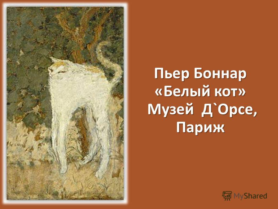 Пьер Боннар «Белый кот» Музей Д`Орсе, Париж