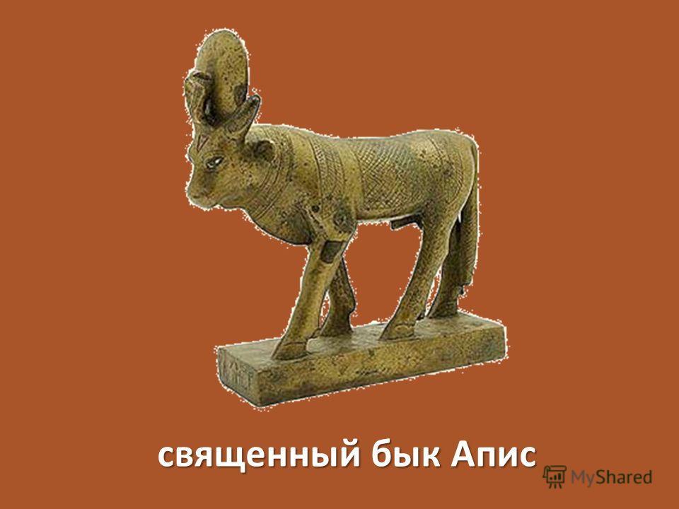 священный бык Апис