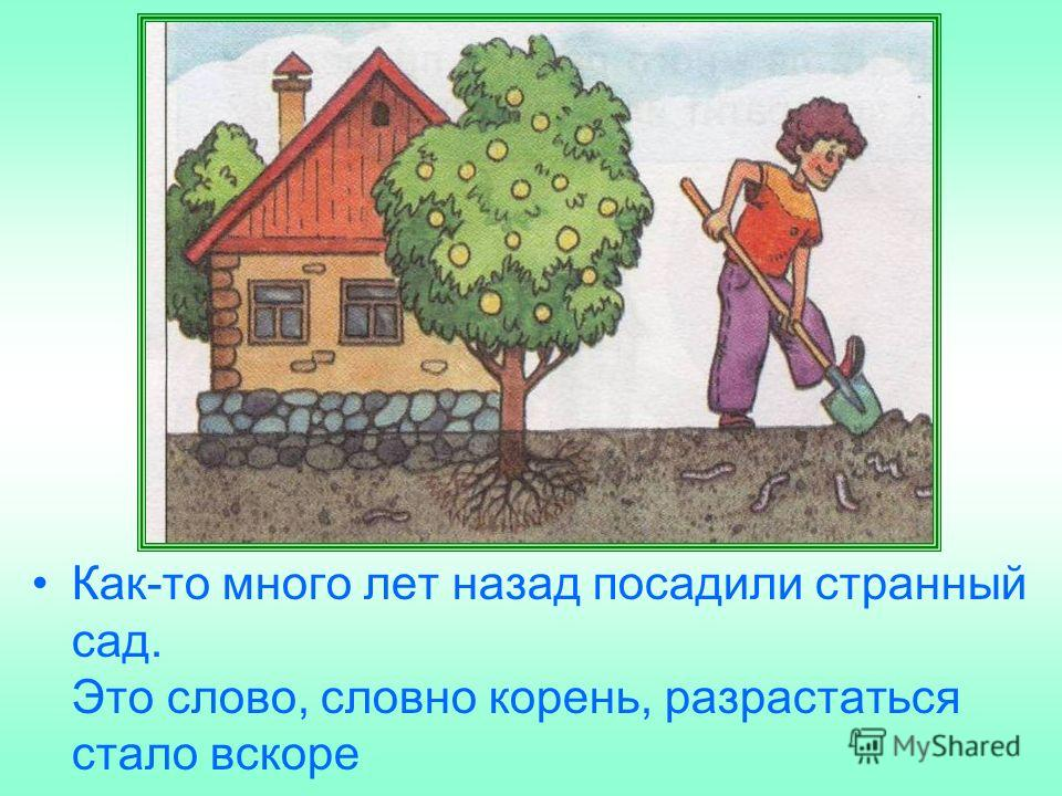 Как-то много лет назад посадили странный сад. Это слово, словно корень, разрастаться стало вскоре
