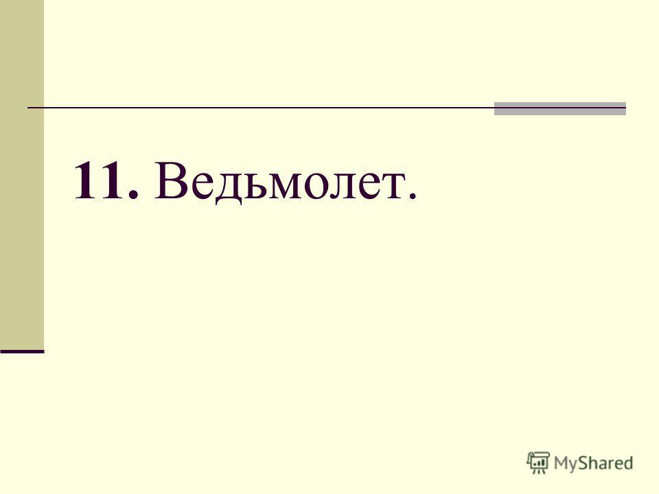 11. Ведьмолет.