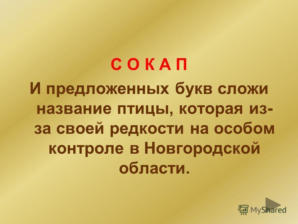 ЛЕСНОЙ ЖАВОРОНОК
