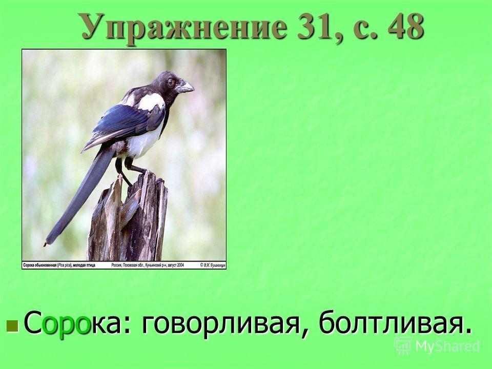 Упражнение 31, с. 48 Сорока: говорливая, болтливая. Сорока: говорливая, болтливая.