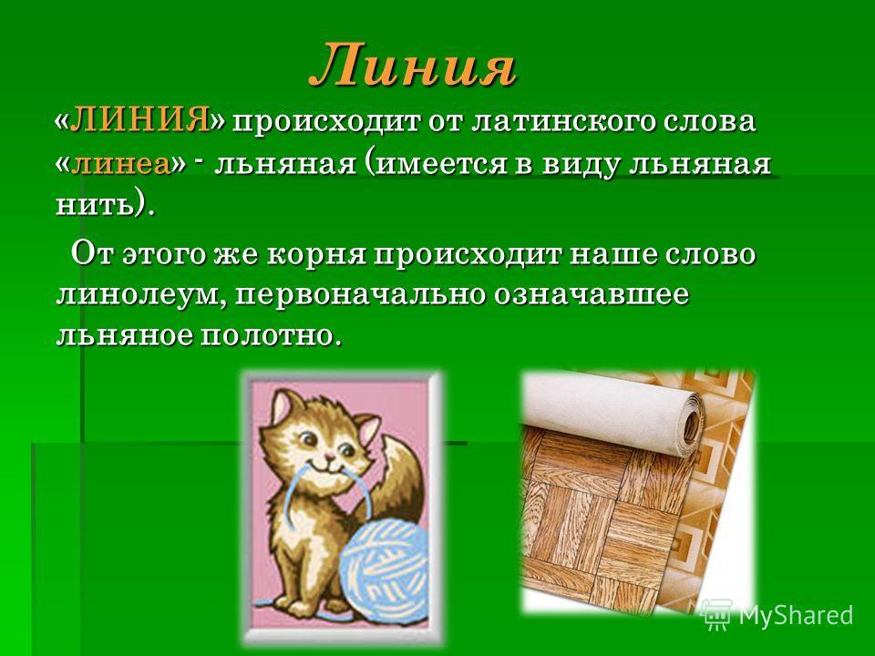 Линия «ЛИНИЯ» происходит от латинского слова «линеа» - льняная (имеется в виду льняная нить). От этого же корня происходит наше слово линолеум, первоначально означавшее льняное полотно.