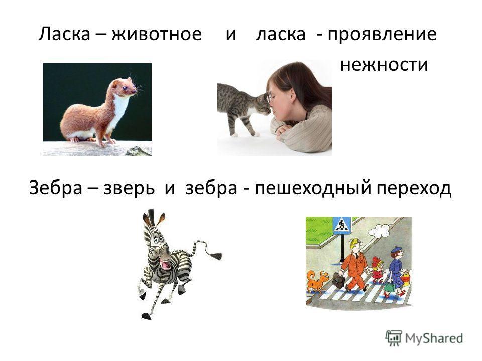 Ласка – животное и ласка - проявление нежности Зебра – зверь и зебра - пешеходный переход