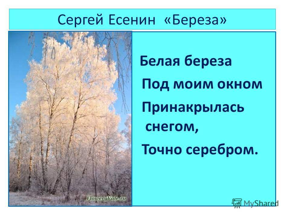 Сергей Есенин «Береза» Белая береза Под моим окном Принакрылась снегом, Точно серебром.