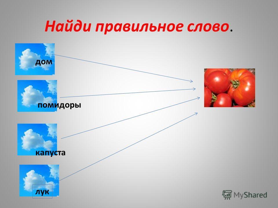 Найди правильное слово. дом помидоры капуста лук