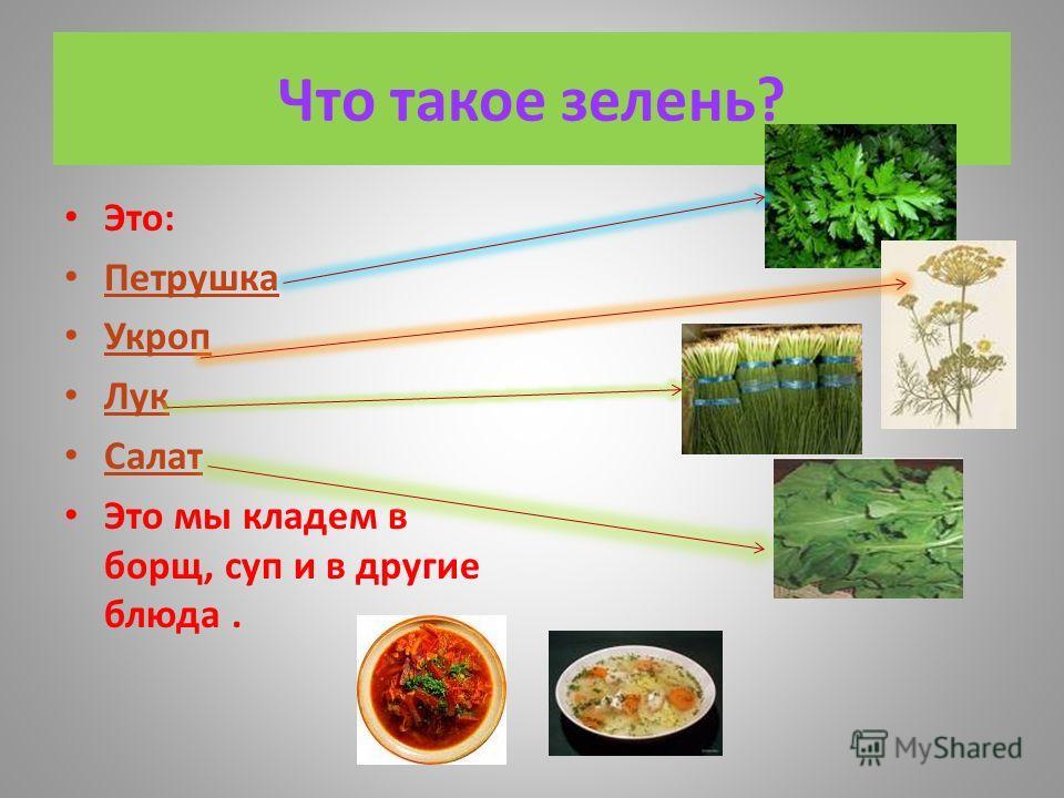 Что такое зелень? Это: Петрушка Укроп Лук Салат Это мы кладем в борщ, суп и в другие блюда.