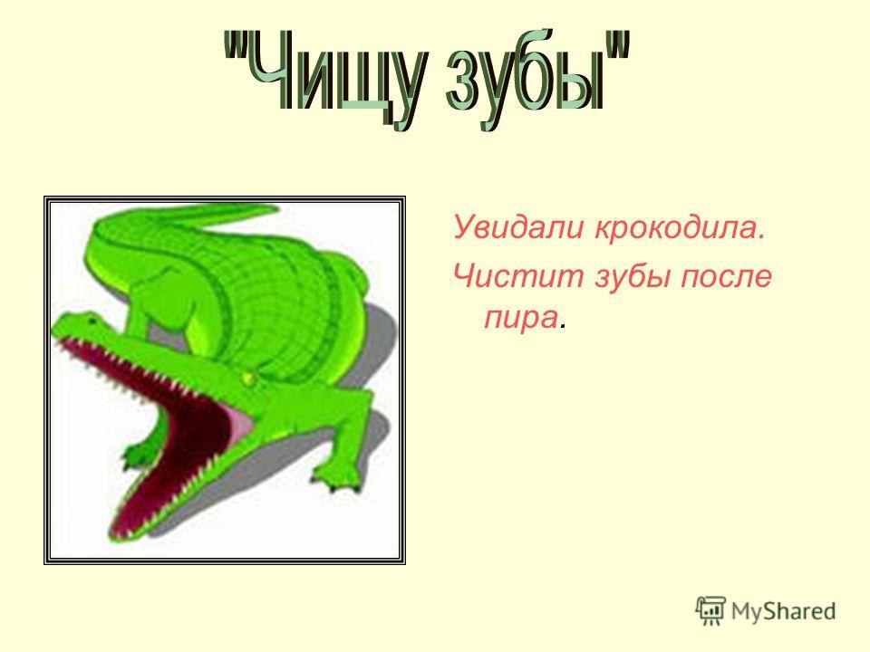 Увидали крокодила. Чистит зубы после пира.
