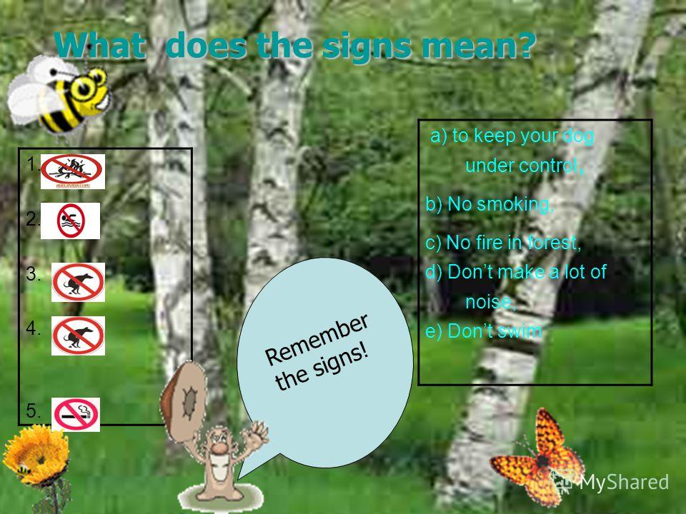 What rules must you keep in the forest? How can you help to protect the nature? Use the following rules: We must put out the fire carefully. We mustn't make a fire in the forest. We must keep the water clean. We mustn't climb trees We must keep the w