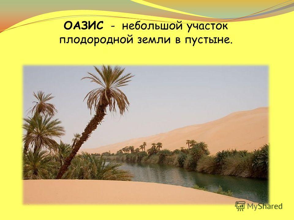 ОАЗИС - небольшой участок плодородной земли в пустыне.