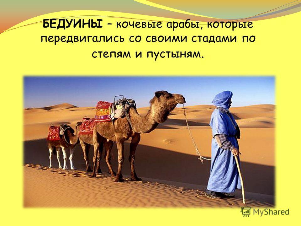 БЕДУИНЫ – кочевые арабы, которые передвигались со своими стадами по степям и пустыням.