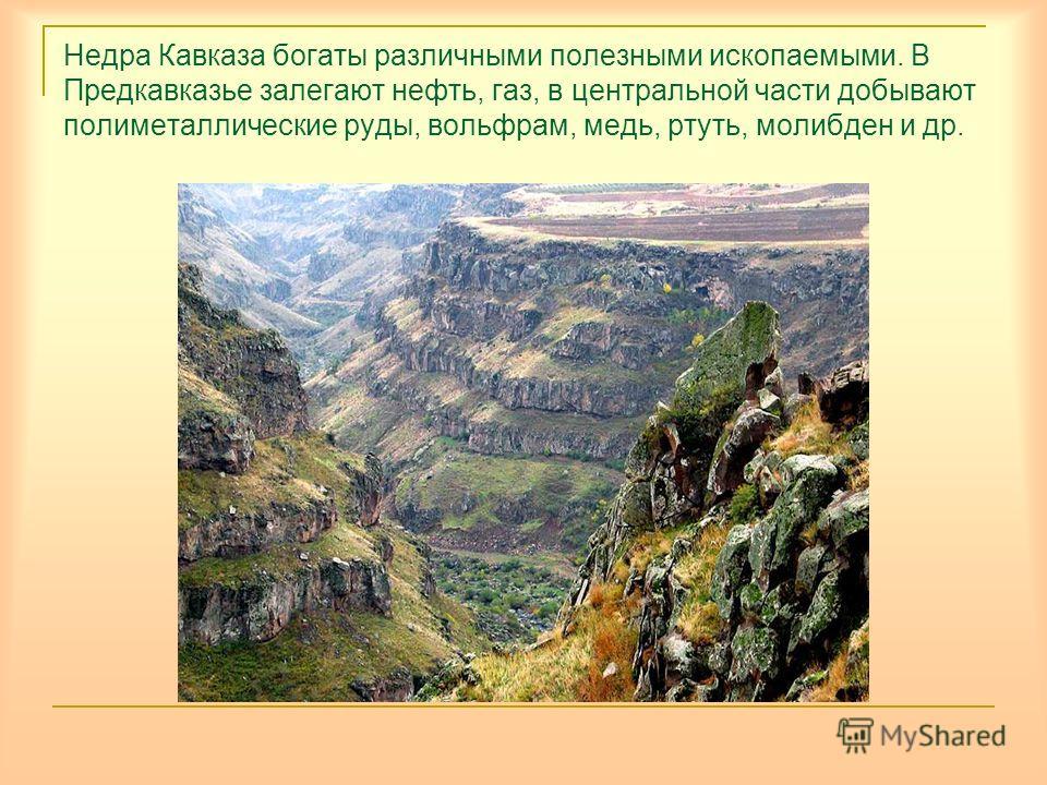 Недра Кавказа богаты различными полезными ископаемыми. В Предкавказье залегают нефть, газ, в центральной части добывают полиметаллические руды, вольфрам, медь, ртуть, молибден и др.